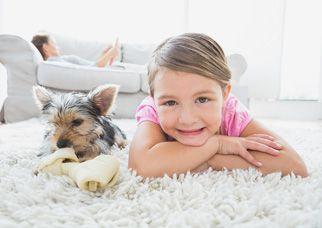 Carpet-Cleaning-Brisbane